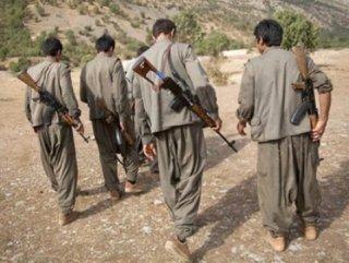 Ağrı Tendürek'te 5 terörist öldürüldü