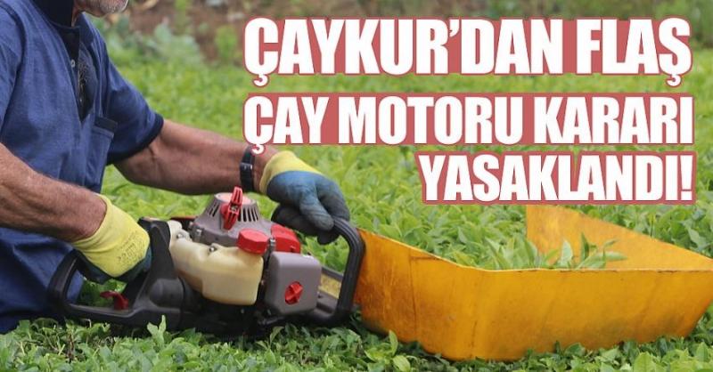 Benzinli çay toplama motorları egzoz gazı salınımı dolayısıyla yasaklandı.