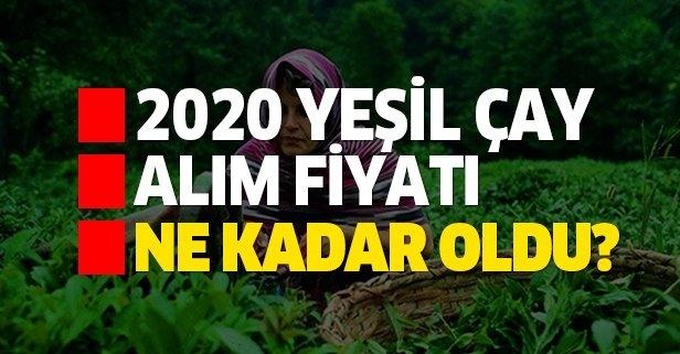 Cumhurbaşkanı Erdoğan, 2020 Yılı Yaş Çay Kilo Fiyatını Açıkladı