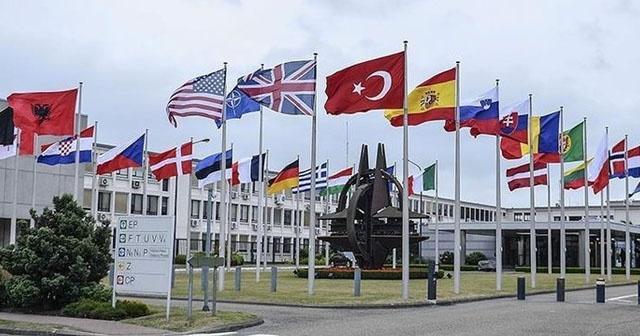 NATO'dan Zeytin Dalı açıklaması