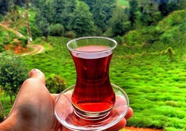 Tarım ve Orman Bakanlığı Bütçe Görüşmesinde Çay ve Fındık Gündemi
