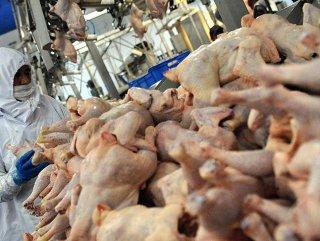 Tavuk eti fiyatlarında yüzde 20'lik artış