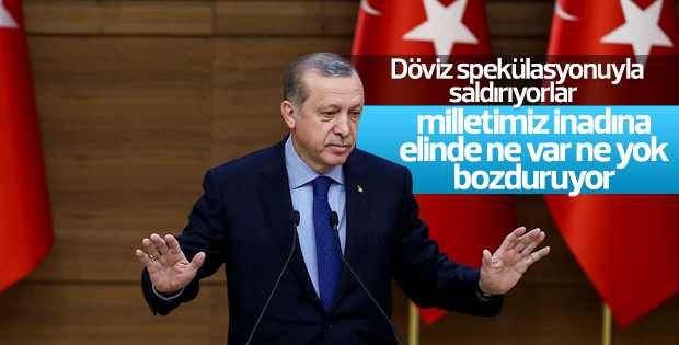 Cumhurbaşkanı Erdoğan'ın döviz çağrısı karşılık buldu