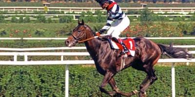 92. Gazi Koşusu'nu Hep Beraber kazandı