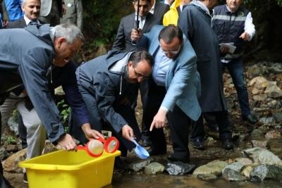 Bakan Yardımcısı Özkaldı: Fırtına Deresi'ne 7 Yılda 1,5 Milyon Balık Bırakıldı
