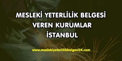 Mesleki Yeterlilik Belgesi Veren Kurumlar İstanbul