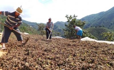 Rehbet Kitapçı Bölge Tarım İşçileri İçin Hazırlandı