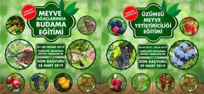 """Rize'de """"Meyve Ağaçlarında Budama Eğitimi"""" ve """"Üzümsü Meyve Yetiştiriciliği Eğitimi"""" Verilecek"""