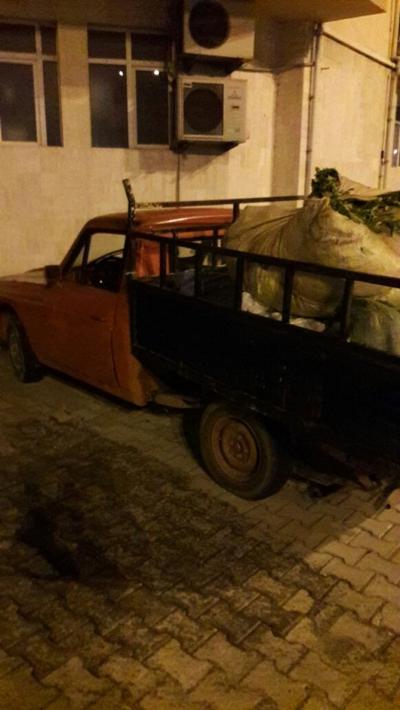 Rize'de Yaş Çay Hırsızları Çaldıkları Çaylarla Yakalandı