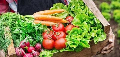 TÜSPAF: Sebze ve meyve fiyatları yarı yarıya düşecek